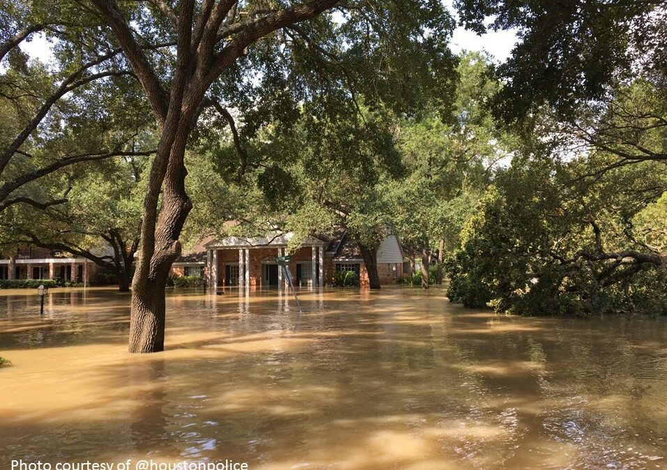 Understanding Flood Communication & Education in Texas